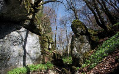 Meßkirch, 88605